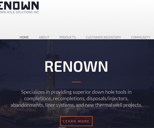 Renown DS